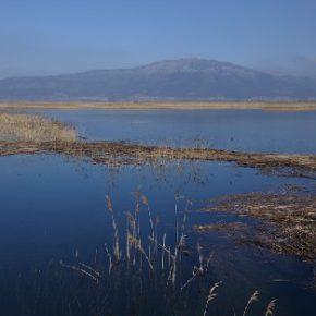 685 7 290x290 - Jezero na Valentinovo