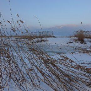 681 9 290x290 - Zimski sprehod do Ponikev