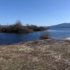 686 1 290x290 - Jezero zalito