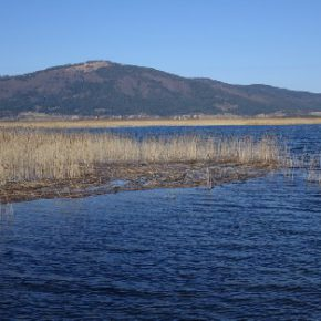 686 5 290x290 - Jezero zalito
