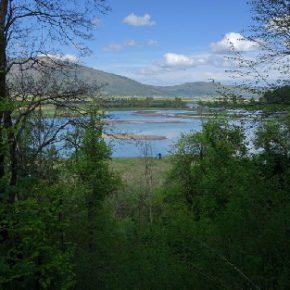 695 10 290x290 - Padavine napolnile Jezero