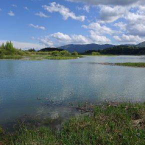 695 2 290x290 - Padavine napolnile Jezero