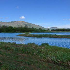 695 5 290x290 - Padavine napolnile Jezero