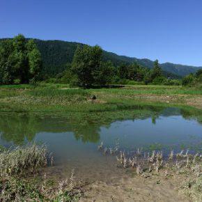 702 3 290x290 - Jezero usiha