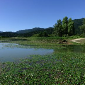 702 4 290x290 - Jezero usiha