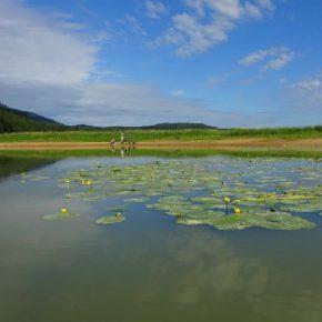 709 3 290x290 - Jezero skozi fotografski objektiv