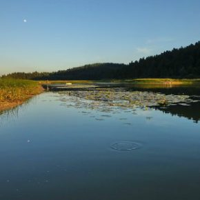 709 8 290x290 - Jezero skozi fotografski objektiv