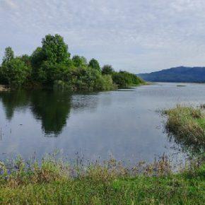714 1 290x290 - Jezero zalito