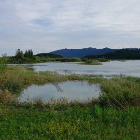 714 4 290x290 - Jezero zalito