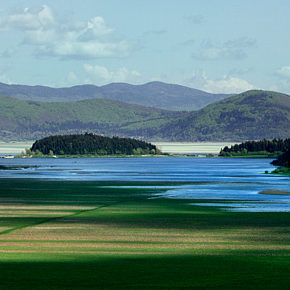 foto 2 290x290 - Photographies from Lake Cerknica