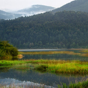 foto 3 290x290 - Photographies from Lake Cerknica