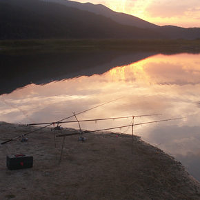 foto 6 290x290 - Photographies from Lake Cerknica