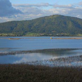715 8 290x290 - Jezero lepo razlito