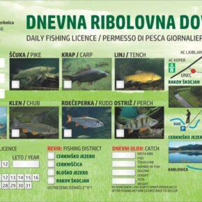Ribolovna dovolilnica 2021 prva 290x290 - NOVE DNEVNE DOVOLILNICE ZA RIBOLOV