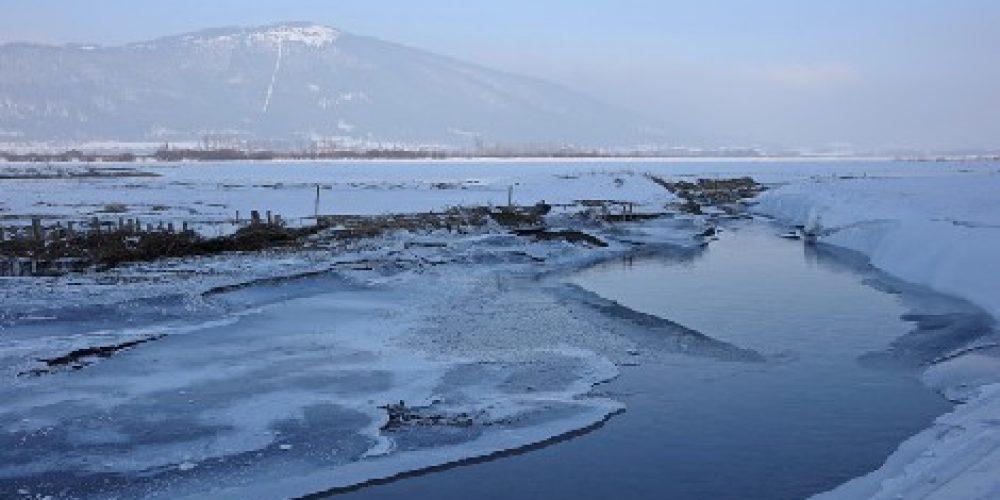Zimski sprehod do Ponikev
