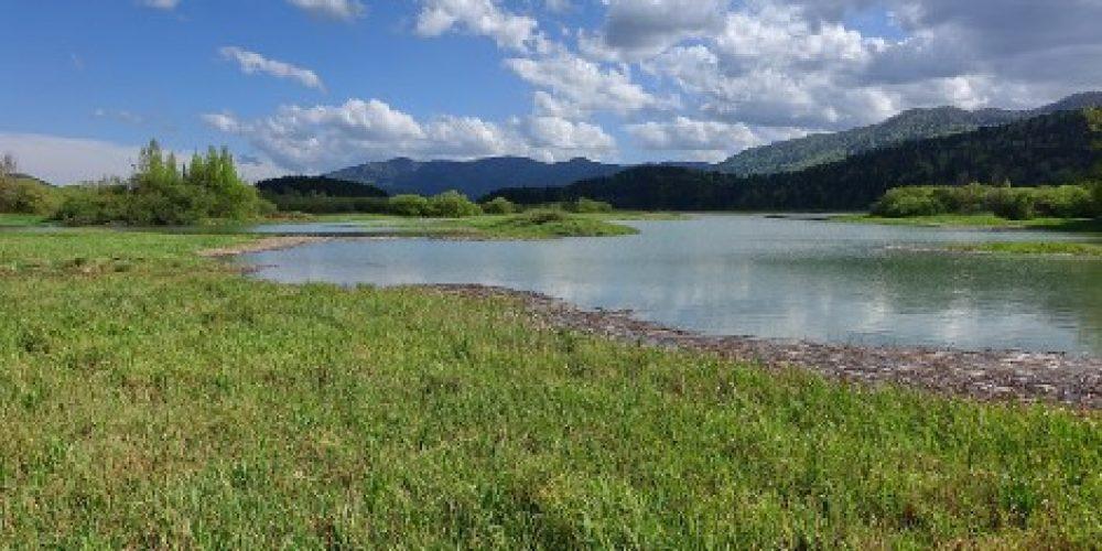Padavine napolnile Jezero