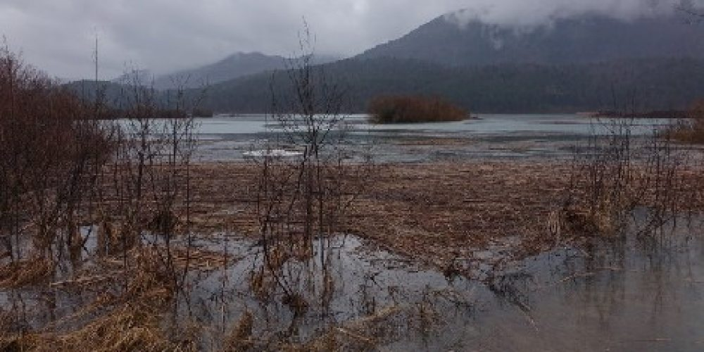 Jezero zalito
