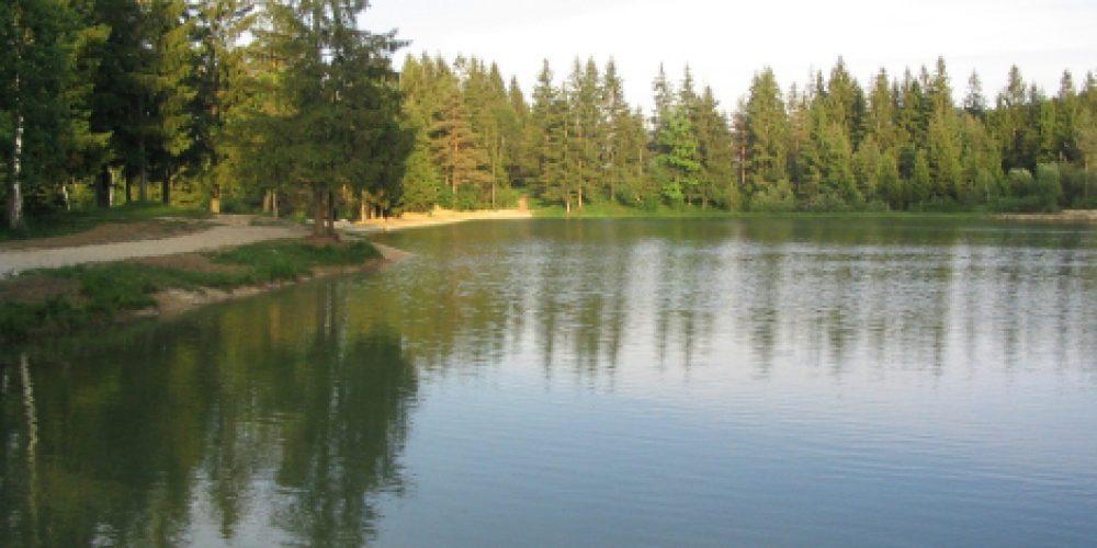 Sanacija Bloškega jezera